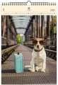 Dřevěný obrazový kalendář 2020 - Dog
