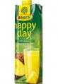 Džus HAPPY DAY - ananas 100%, 1 l