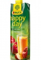 Džus HAPPY DAY - jablko 100 %, 1 l