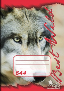 Sešit A6, 40 listů,linkovaný