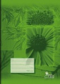 Školní sešit - A5, čtverečkovaný, 40 listů, č. 544, recyklovaný