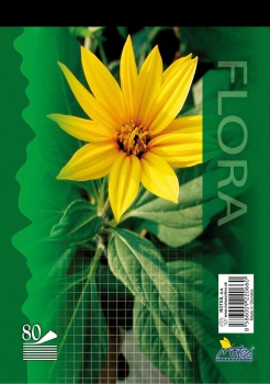 Poznámkový blok A5, 80 listů, čtverečkovaný