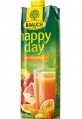 Džus HAPPY DAY - multivitamín 100 %, 1 l
