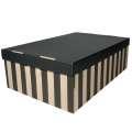 Archivační krabice BIG BOX - 56 x 37 x 18 cm, s víkem, pruhovaná, 2 ks