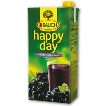 Džus HAPPY DAY - černý rybíz, 2 l
