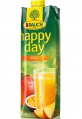 Džus HAPPY DAY - mango 30 %, 1 l