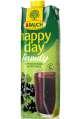 Džus Happy Day Family - černý rybíz, 1 l