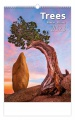 Nástěnný kalendář 2020 - Trees/Baume/Stromy