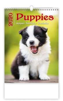 Nástěnný kalendář 2018 Štěňátka - Puppies