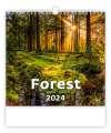 Nástěnný kalendář 2017 Les - Forest
