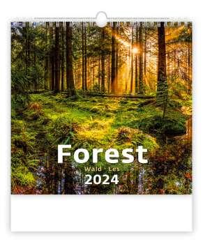 Nástěnný kalendář 2018 Les - Forest