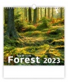 Nástěnný kalendář 2021 Forest/Wald/Les