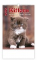 Nástěnný kalendář 2017 Kočičky - Kittens