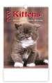 Nástěnný kalendář 2018 Kočičky - Kittens