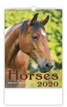 Nástěnný kalendář 2018 Koně - Horses
