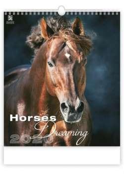 Nástěnný kalendář 2017 Horses in Motion