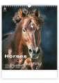 Nástěnný kalendář Horses in Motion