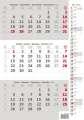 Tříměsíční kalendář 2021 - poznámkový, šedý