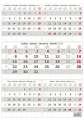 Nástěnný kalendář Pětiměsíční 2019, šedá