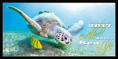 Nástěnný kalendář 2017 All About Sea Life