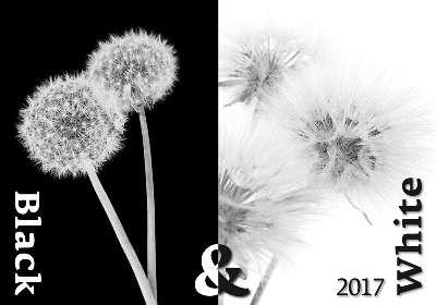 Nástěnný kalendář 2017 Black & White