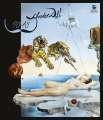 Nástěnný kalendář 2018 Salvador Dalí