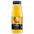 Cappy Great Start pomeranč, 250 ml, bal = 12 ks