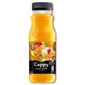 Cappy Great Start - multifruit, 12x 0,25 l